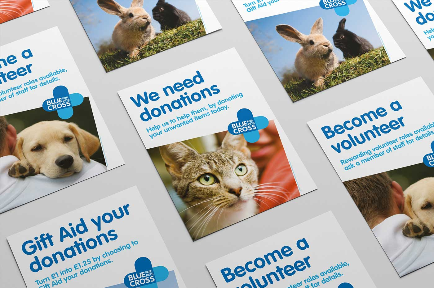 Blue Cross Promotional Flyers