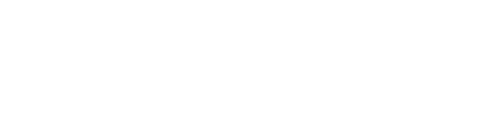 The Wedding Club Logo